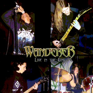 Wanderer - Live in the Fog