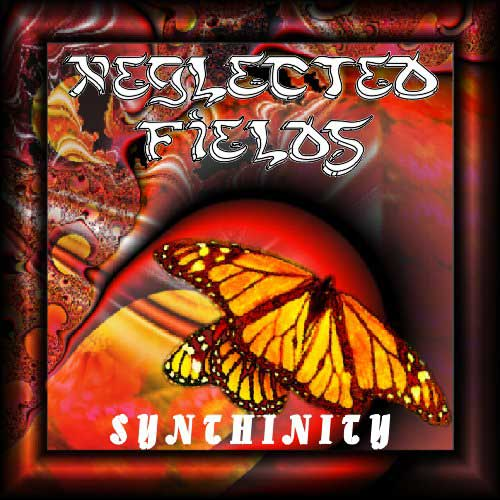 Neglected Fields - Synthinity