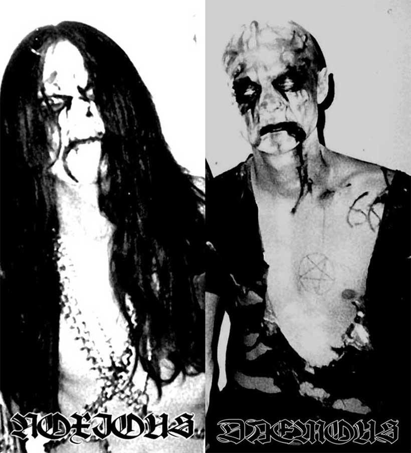 Nocturnal Amentia - Photo