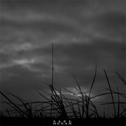 Sael - Ocean