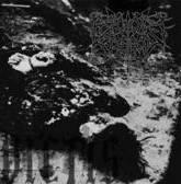 Reign of Erebus - Vae Victis
