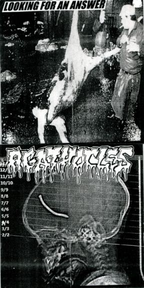 Agathocles / Looking for an Answer - Agathocles / Looking for an Answer