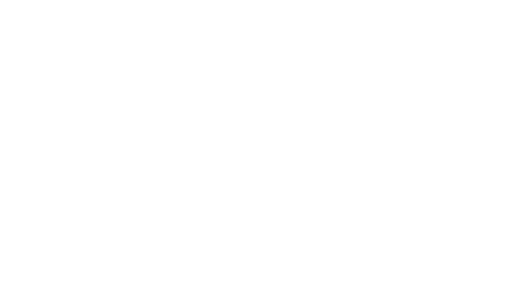 P.L.F. - Logo