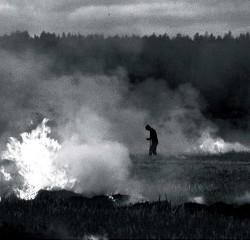 Northern Discipline - Burn-Beaten Soil