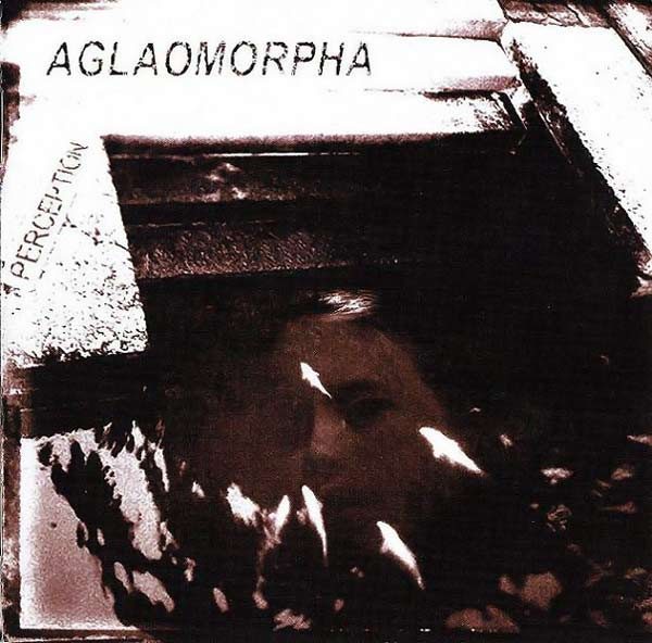 Aglaomorpha - Perception