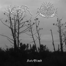 Vordr / Heidenwelt - HateBlood