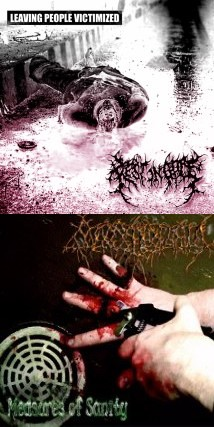 Maggottholamia / Rest in Gore - Leaving People Victimized / Measures of Sanity