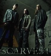 Scarvest - Photo