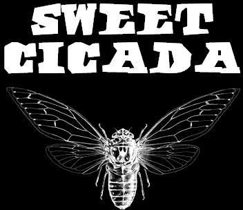 Sweet Cicada - Logo