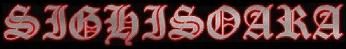 Sighisoara - Logo