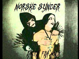 Norske Synder - Raseri fra nord