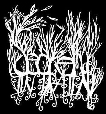 Secretly in Pain - Logo