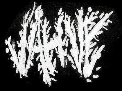 Jahve - Logo