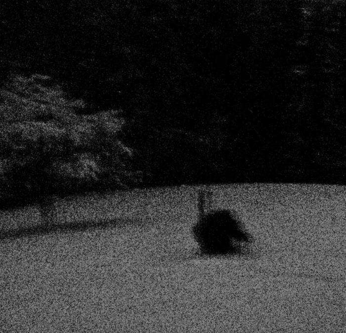 Nordlicht - Photo