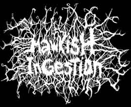 Mawkish Ingestion - Logo