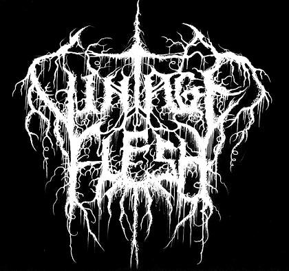 Vintage Flesh - Logo