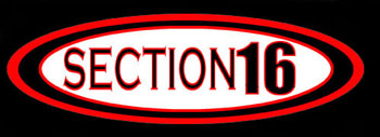 Section 16 - Logo
