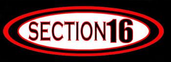 Section 16 - Logo