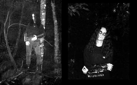 Dark Forest - Photo