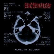 Encephalon - Neuropathology