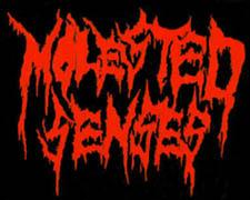Molested Senses - Logo