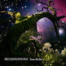 Mandragora - Cosmic Old Oak