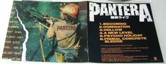 Pantera - Becoming
