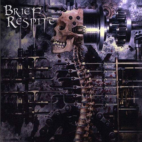 Brief Respite - Uneveness