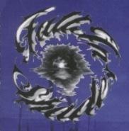 Fall in Shades - Logo