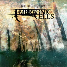 Embryonic Cells - Before the Storm