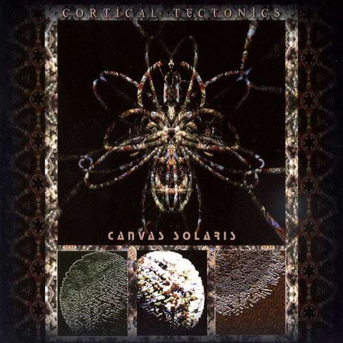 Canvas Solaris - Cortical Tectonics