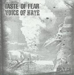 Voice of Hate / Taste of Fear - Taste of Fear / Voice of Hate