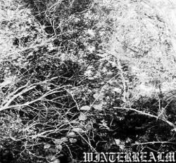 WinterRealm - Ancient