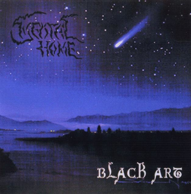 Mental Home - Black Art