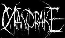 The Mandrake - Logo