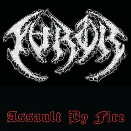 The Furor - Assault by Fire