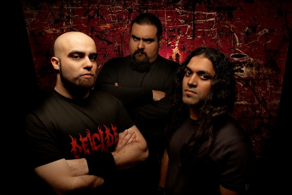 Nervecell - Photo