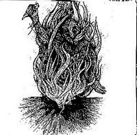 Bone Awl / Furdidurke - Bone Awl / Furdidurke