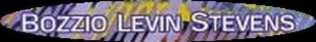 Bozzio Levin Stevens - Logo
