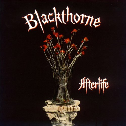 Blackthorne - Afterlife