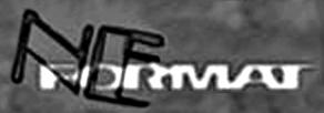 NEFormat - Logo