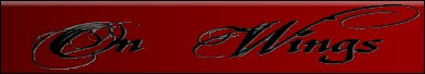 On Wings - Logo