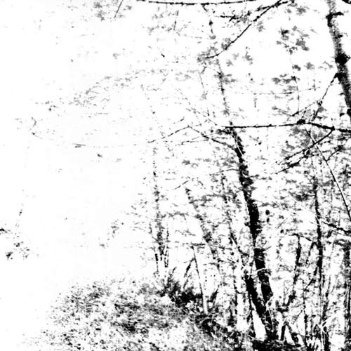 Agalloch - The White