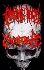 Demonic Rage / Excoriate - Death Communion