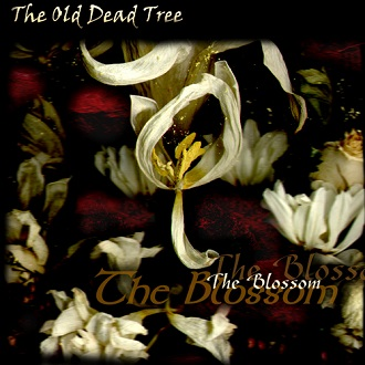 The Old Dead Tree - The Blossom