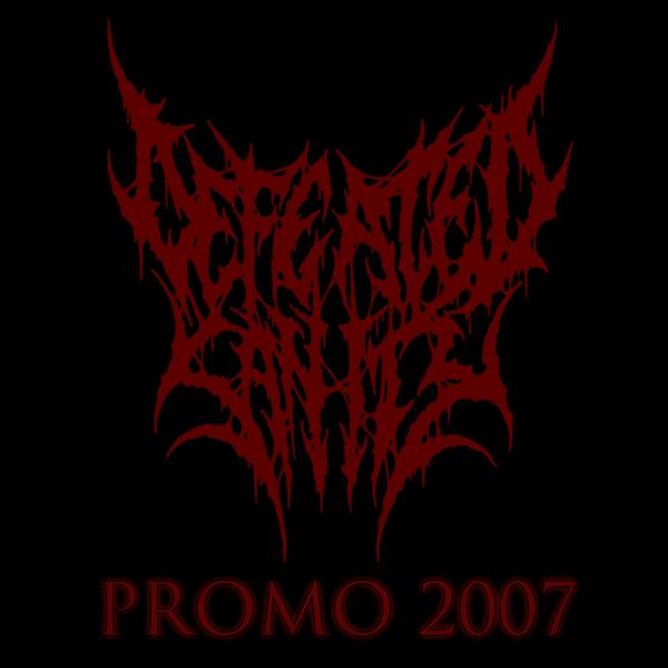 Defeated Sanity - Promo 2007