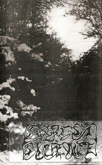 Forest Silence - The Third Winter