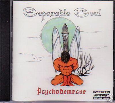 Separable Soul - Psychodomesne