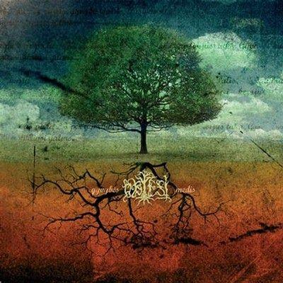 Obtest - Gyvybės medis