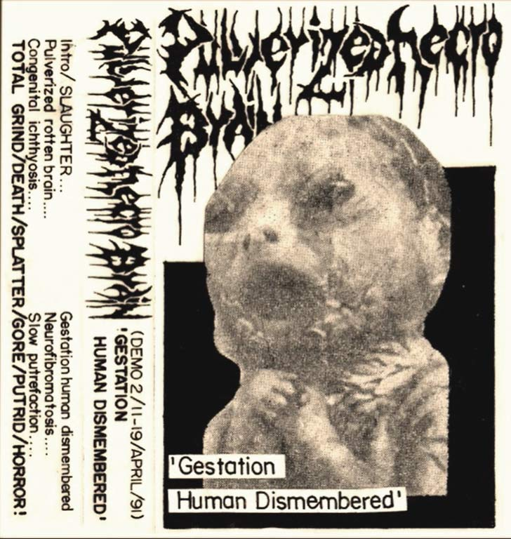 Pulverized Necro Brain - Gestation Human Dismembered